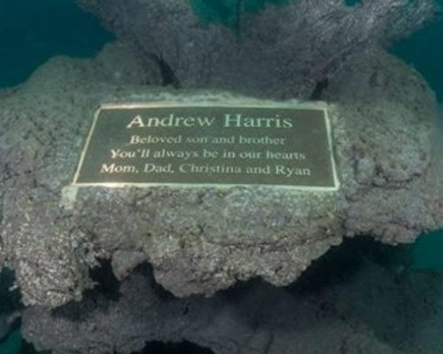 "The Andrew ""Red"" Harris Foundation - Building Artificial Reefs for Life"